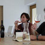 Weintour Vipava Brda