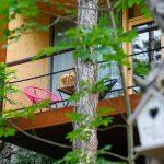 Hotel_im_Wald